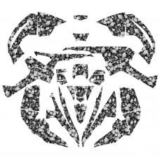 CAN AM  Renegade 800-1000 SKULLs EDITABLE DESIGNS Graphic Templates