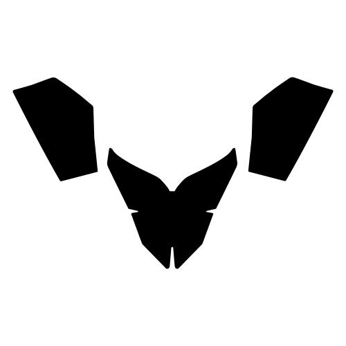 Lynx Rave 2005-2009 Graphics Templates