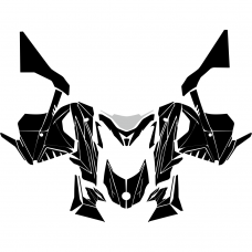 Lynx Rave RS RE (Complete Hood) 2014 2015 2016 2017 2018 Graphic Templates